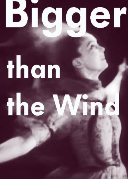 El amor es más fuerte que el viento