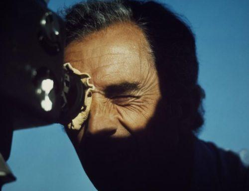Michelangelo Antonioni: Blowing in the Wind