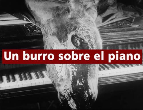 Un burro (o dos) sobre el piano